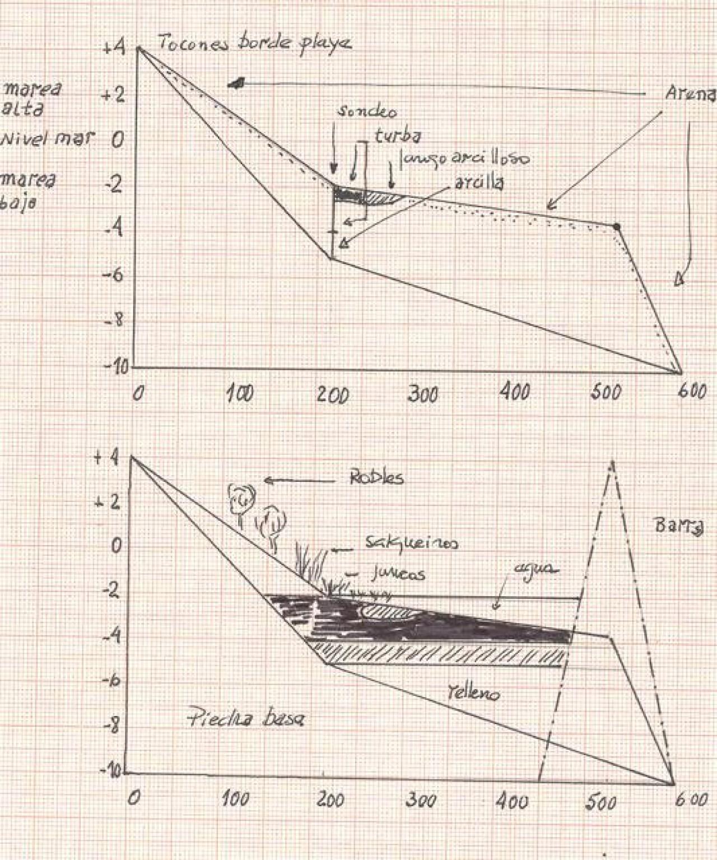 Ínsula Selima, los poblamientos. Turbera - Formación y características