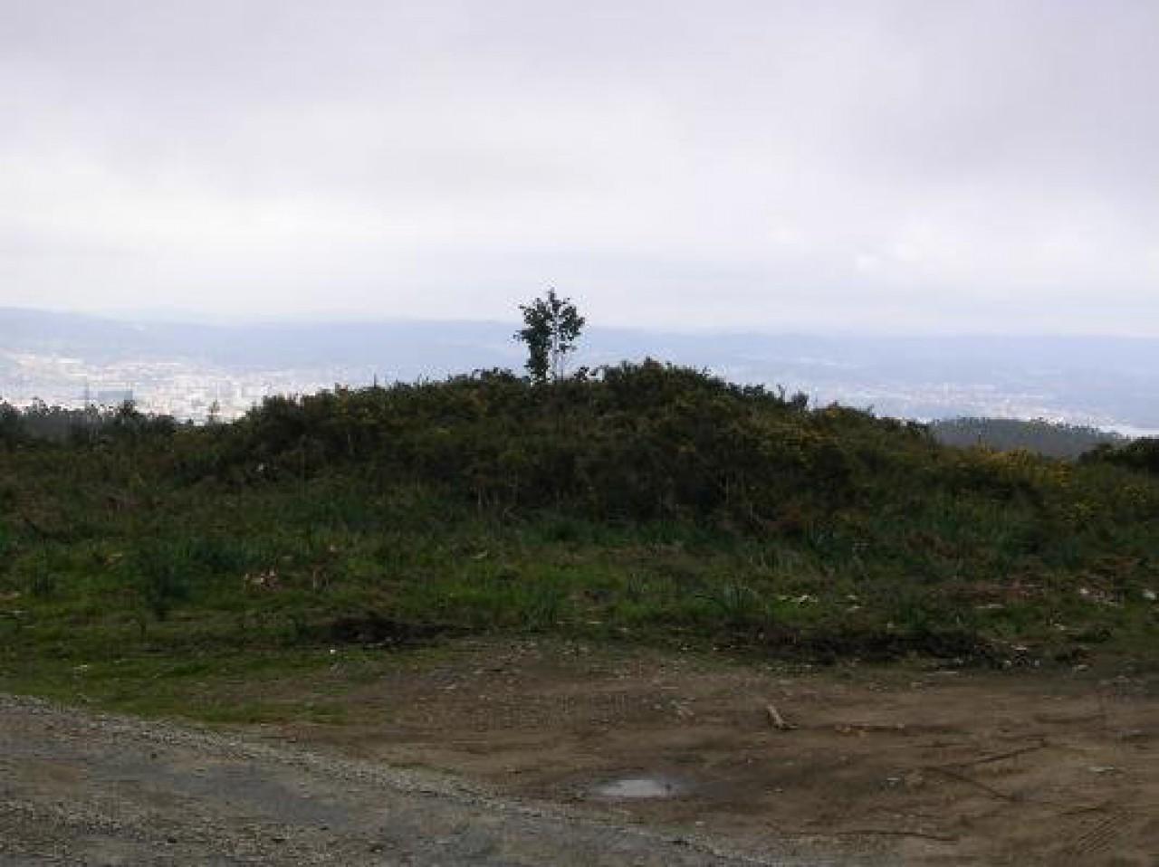 Campaíña fronte a Ría de Ferrol (Mámoa)