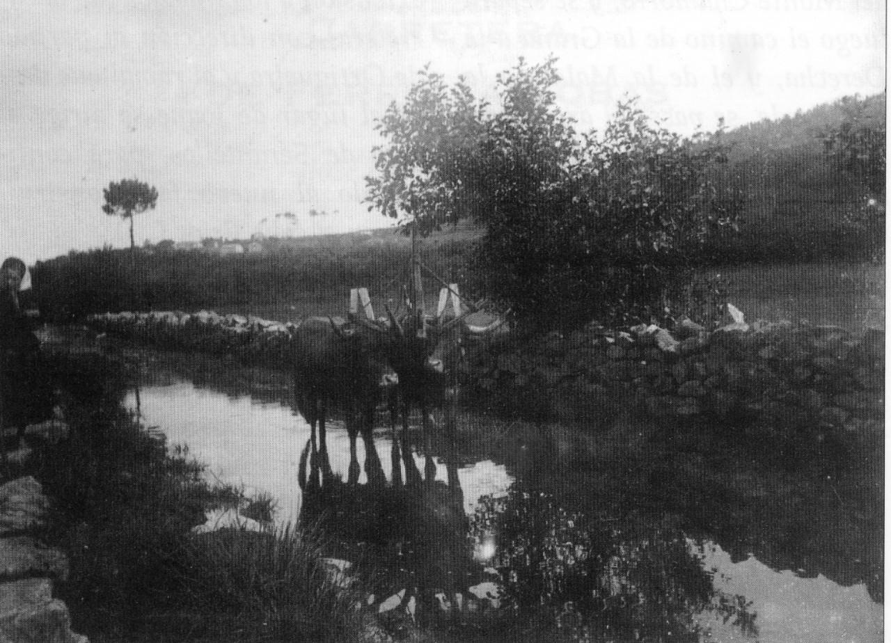Antiguo camino Ferrol-Cobas