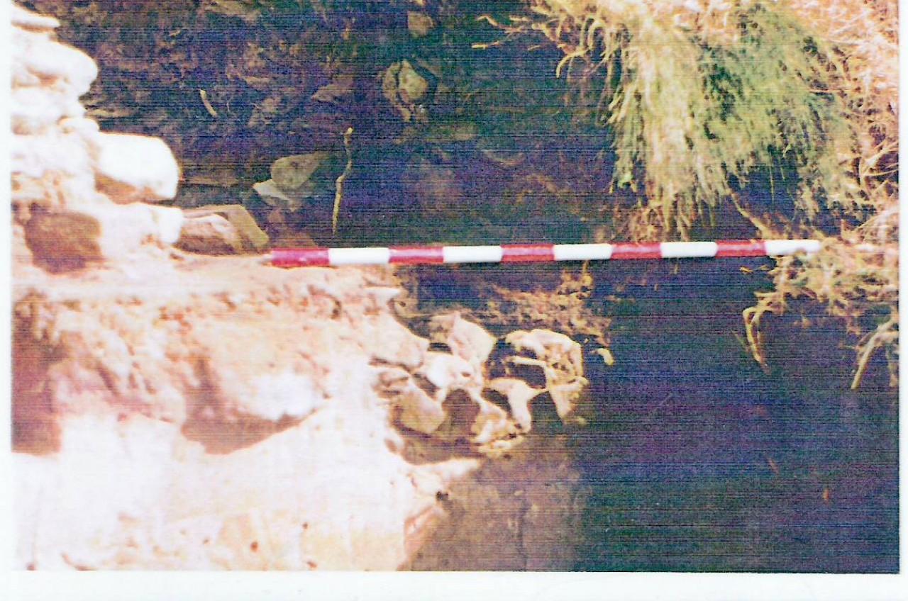 Horno axiliar de conversion por pudelaje Cobas-Ferrol